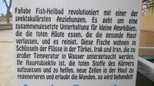 Fischheilbad - Da hat jemand falsch übersetzt.